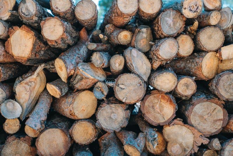 Een stapel van houten logboeken treft voor de houten industrie voorbereidingen stock afbeelding