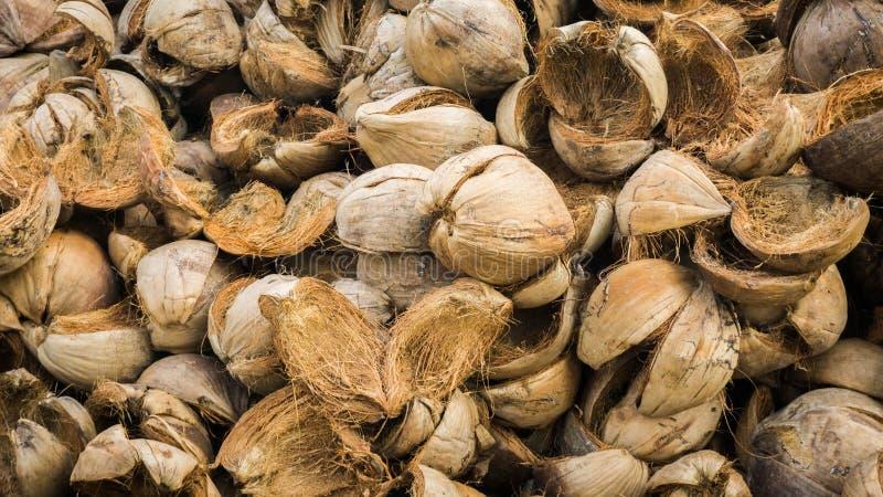 Een stapel van kokosnotenshell huid in het tropische land van Azië stock fotografie