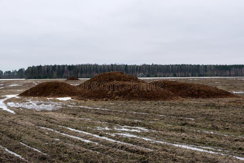 Een stapel van mest op het gebied wordt genomen dat De organische meststoffen worden geïntroduceerd op het gebied in de lente royalty-vrije stock afbeeldingen
