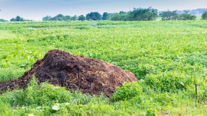 Een stapel van mest stock afbeelding