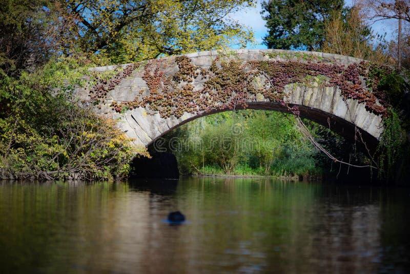Een steenbrug, Gapstow-Brug, in Central Park, NY stock fotografie