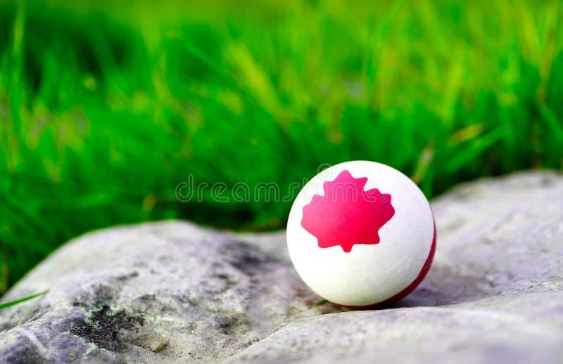 Een stevige rubber witte bal waarop een symbool van het esdoornblad van Canada wordt getrokken De achtergrond is groen gras stock fotografie