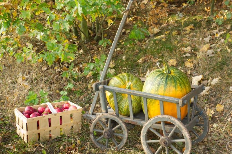 Een stootkar met twee pompoenen en appelen royalty-vrije stock afbeeldingen