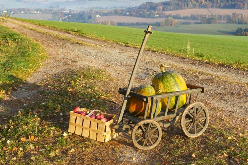 Een stootkar met twee pompoenen en appelen stock afbeeldingen