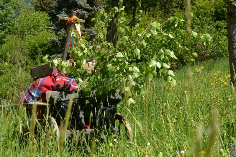 Een stootkar op een groene weide in de lente op vadersdag stock afbeeldingen