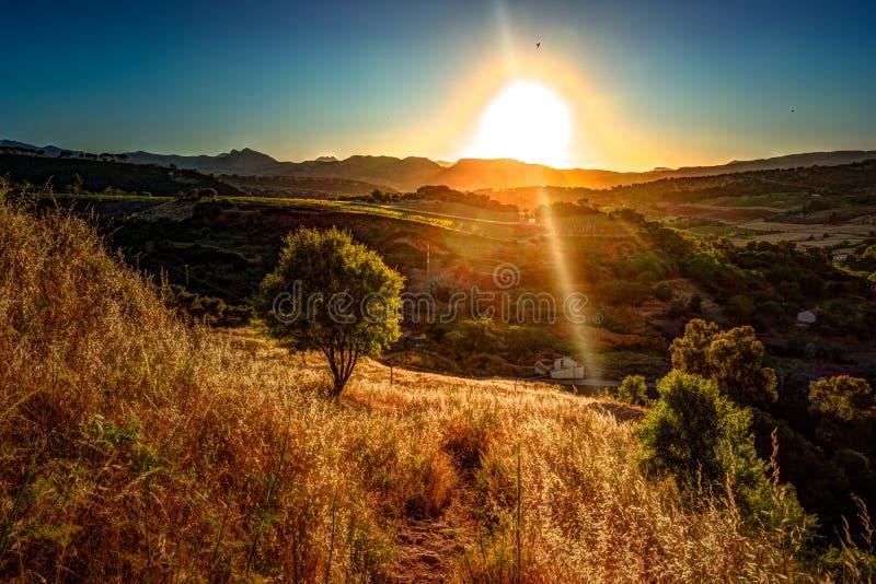 Een straal van lichte onderbrekingen door de dramatische hemel bij zonsondergang en geraakt een solitaire boom op een heuvel royalty-vrije stock afbeelding