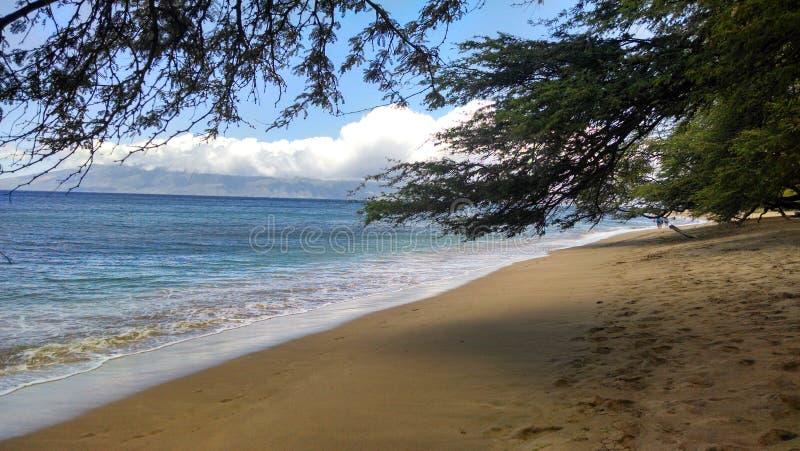Een strand van Maui stock foto