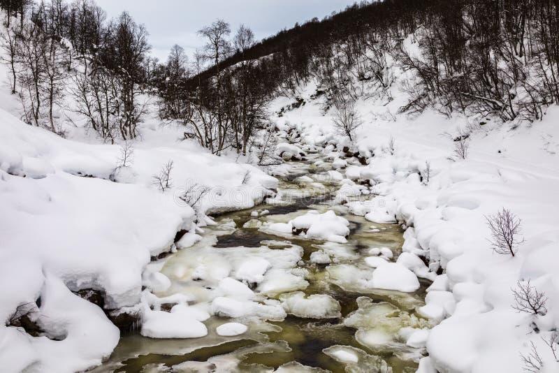 Een stromende de winterrivier in de bergen van Setesdal, Noorwegen De rivier wordt omringd door bomen, sneeuw en ijs royalty-vrije stock afbeelding