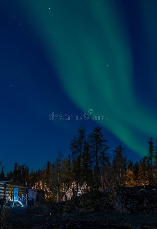Een strook van Aurora Borealis-licht in sterrige nacht over groene pijnboombomen stock afbeelding