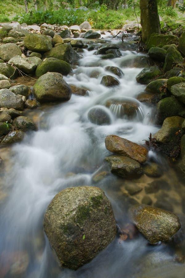 Een stroom/een kreek met dromerige stromende wateren en rots stock foto's
