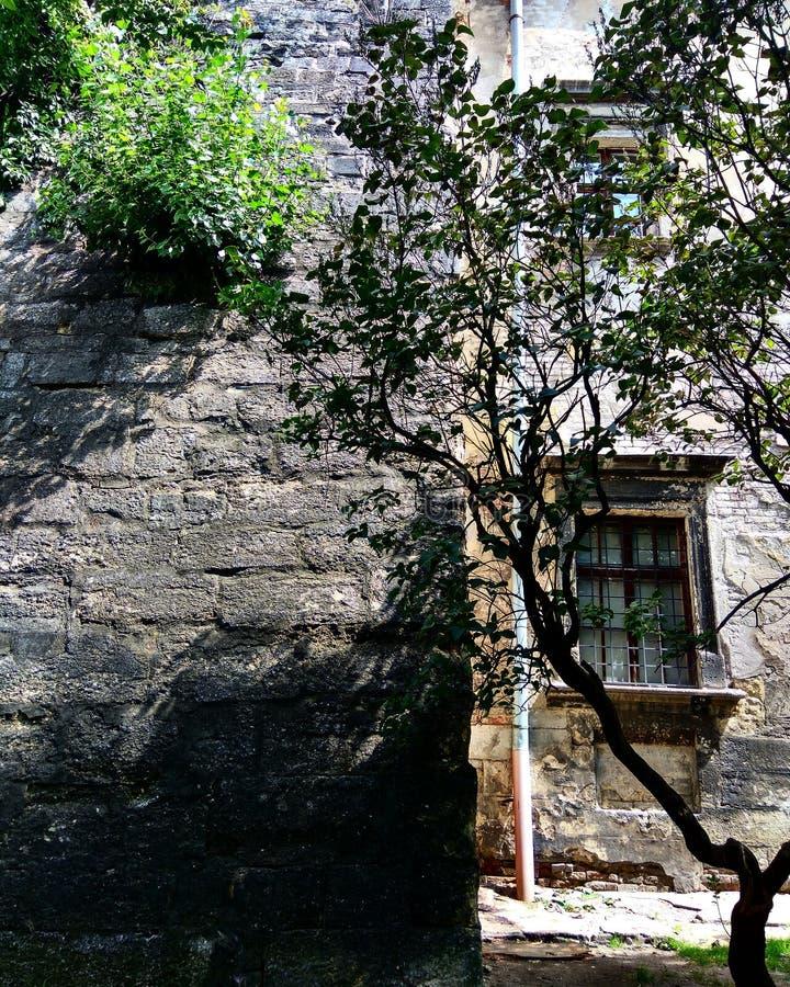 Een stuk van muur van monastry schaduwen royalty-vrije stock foto