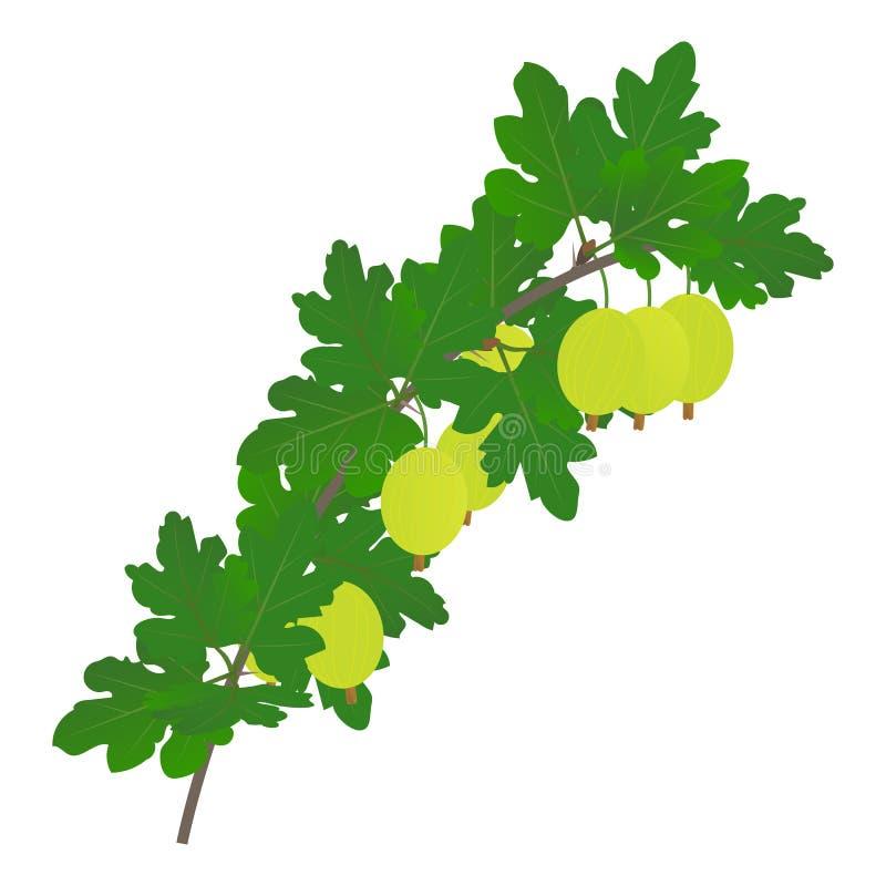 Een tak van goosberry met bessen en bladeren royalty-vrije illustratie