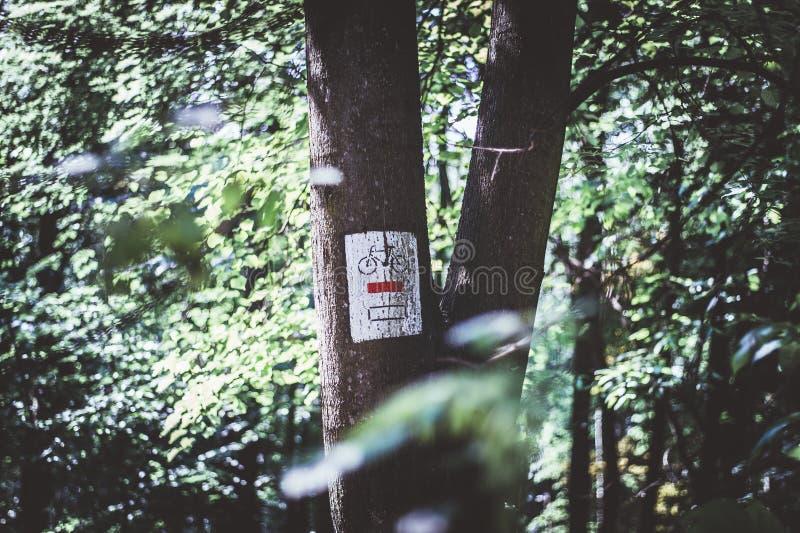 Een teken op een boom in het bos, een weg voor fietsen wordt geschilderd die stock foto