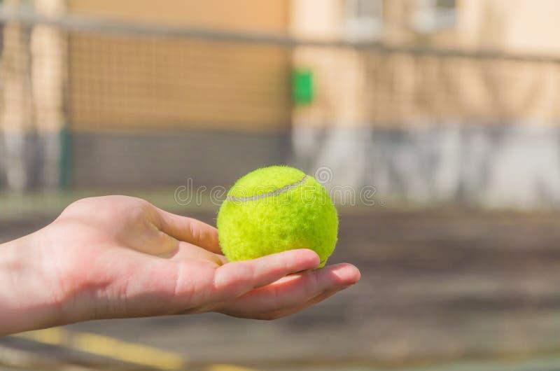 Een tennisbal op een kinderen` s hand stock foto's