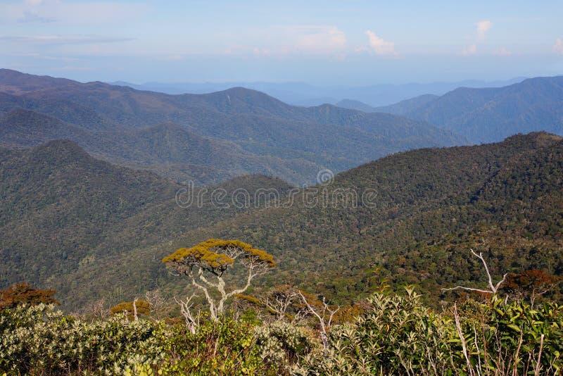 Een toneelmening van de berg in Sumatra - Indonesisch landschap stock foto's