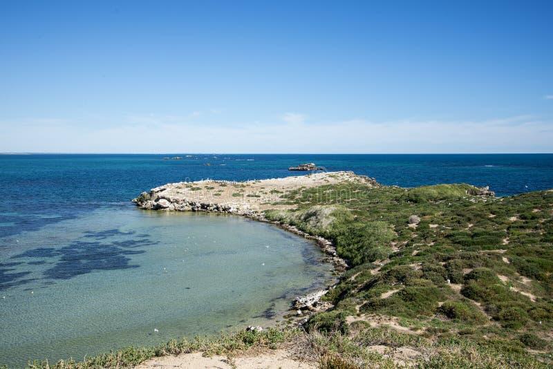Een toneelmening van het schiereiland van het Pinguïneiland in Rockingham royalty-vrije stock afbeeldingen