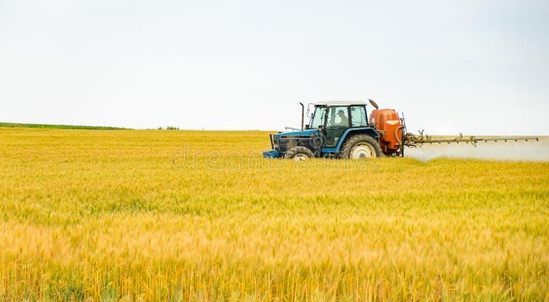 Een tractor bespuitende water of een meststof of chemisch product aan gouden gerstgebied royalty-vrije stock afbeelding