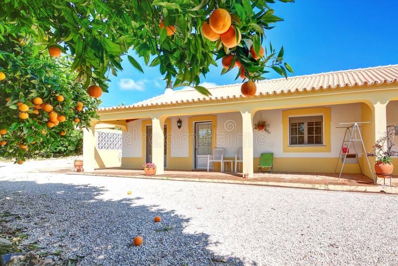Een typisch huis voor de de zomervakantie met oranje tuin. royalty-vrije stock foto