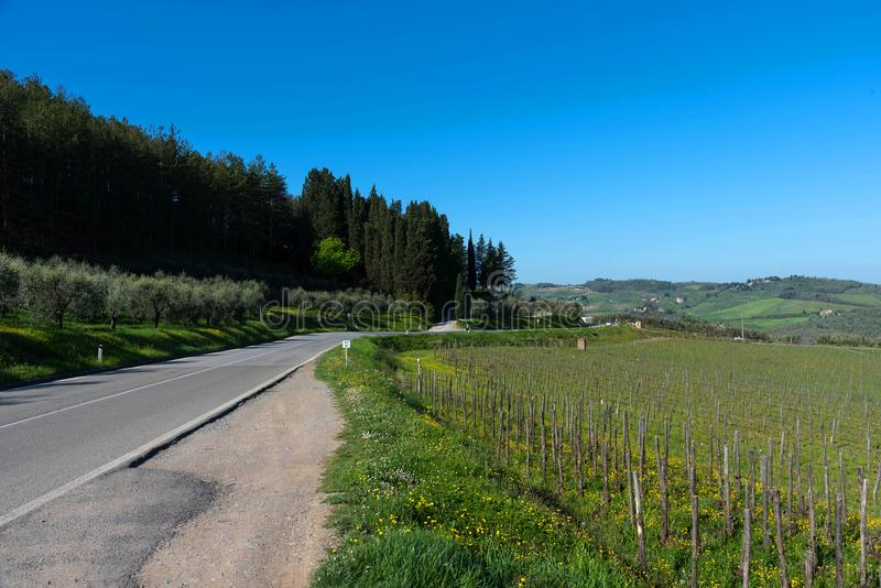 Een typisch landelijk landschap en een weg in het Chiantigebied, in Toscanië, Italië, op een zonnige de zomerdag De weg wordt omr stock foto