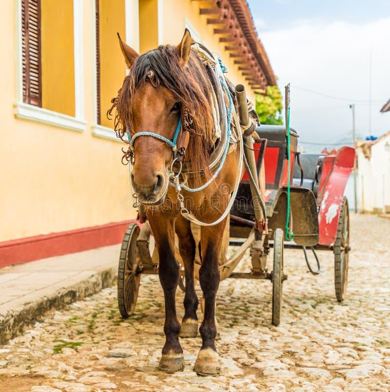 Een typische mening in Trinidad in Cuba royalty-vrije stock foto's