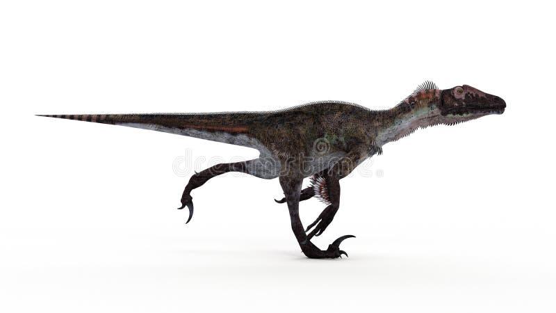 Een utahraptor vector illustratie