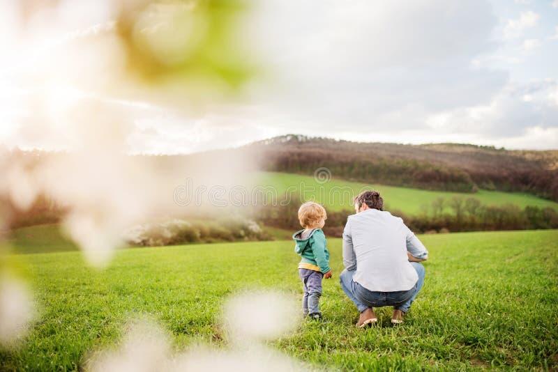 Een vader met zijn peuterzoon buiten in de lenteaard royalty-vrije stock foto's