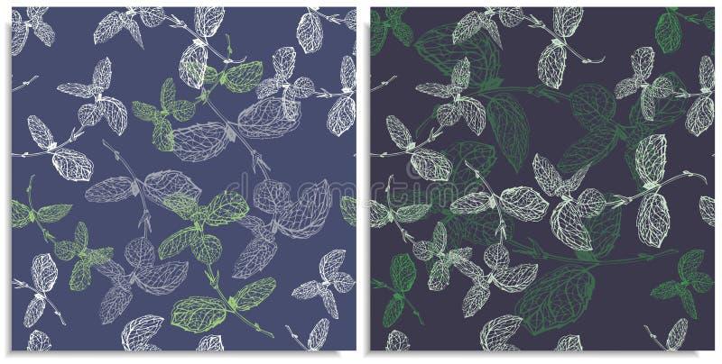 Een vectorreeks van een naadloos patroon met twijgen van munt Hand-drawn op blad bij de grafische stijl Lijnen slechts, goede sam royalty-vrije stock afbeeldingen