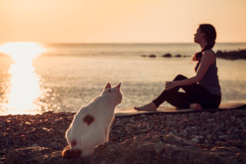 Een verdwaalde kat met nieuwsgierigheid let op het meisje dat met yoga tegen het overzees bezig geweest is stock foto's
