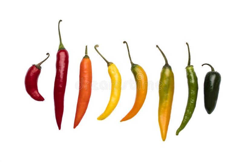 Een verscheidenheid van organische Spaanse pepers op een rij royalty-vrije stock afbeeldingen