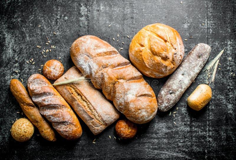 Een verscheidenheid van vers gebakken brood stock afbeeldingen