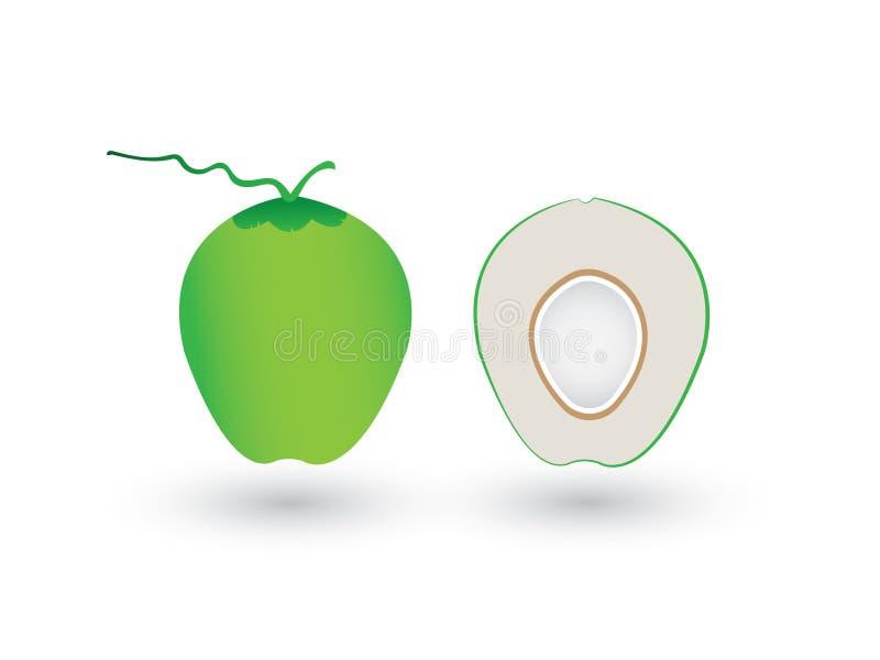 Een verse groene gesneden of halve kokosnoot op witte achtergrond royalty-vrije illustratie