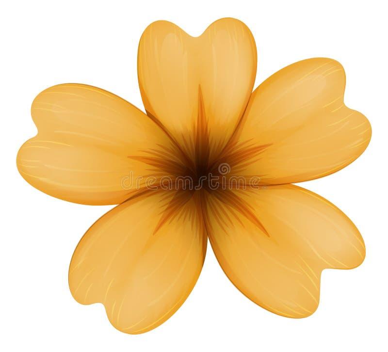 Een vijf-bloemblaadje oranje bloem royalty-vrije illustratie