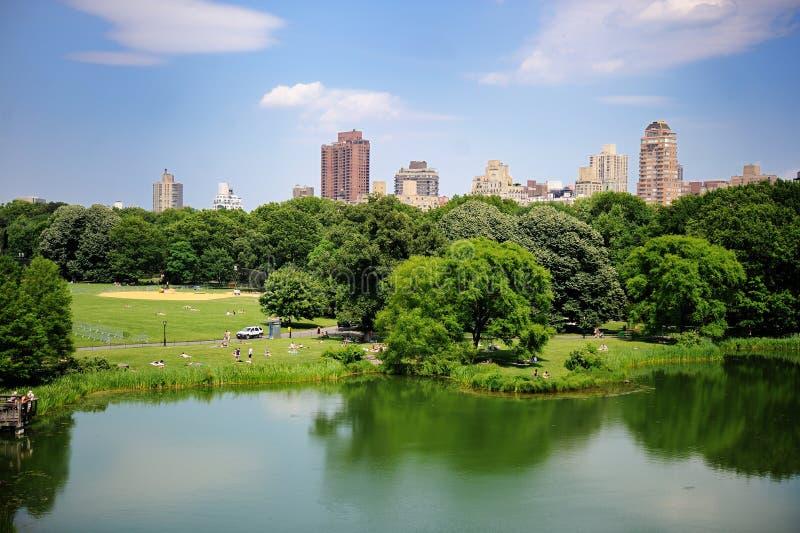 Een vijver in het Central Park van de Stad van New York in de zomer stock afbeelding