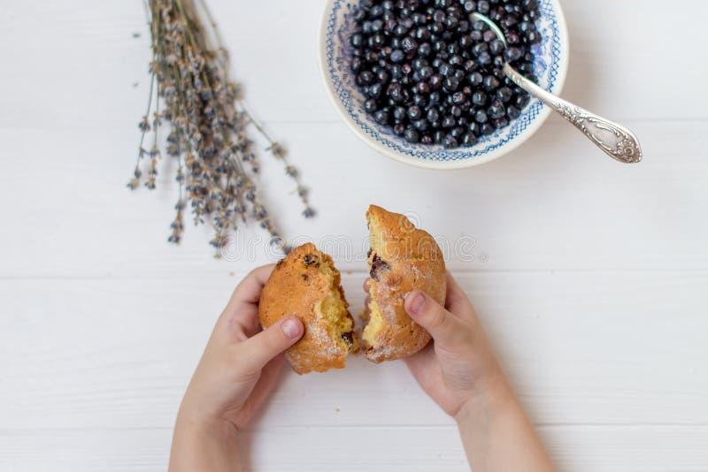 Een vlakte legt van een bosbessenkom, bloemen van open lavendel en de handen van kinderen breken een cupcake op een witte achterg stock foto