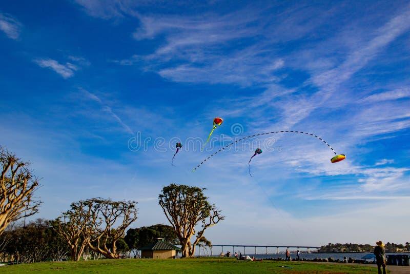 Een Vliegervlieger te de Waterkant stock foto