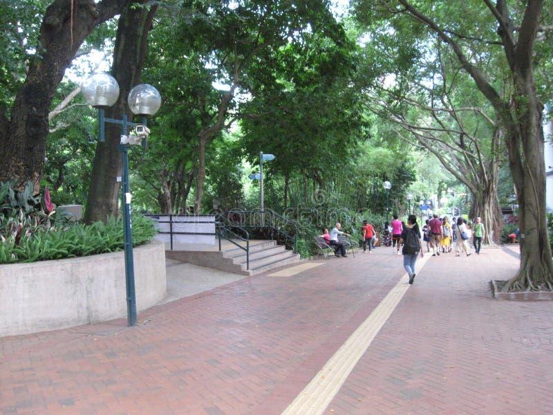 Een voetweg in het weelderige Kowloon-park, Hong Kong stock afbeelding