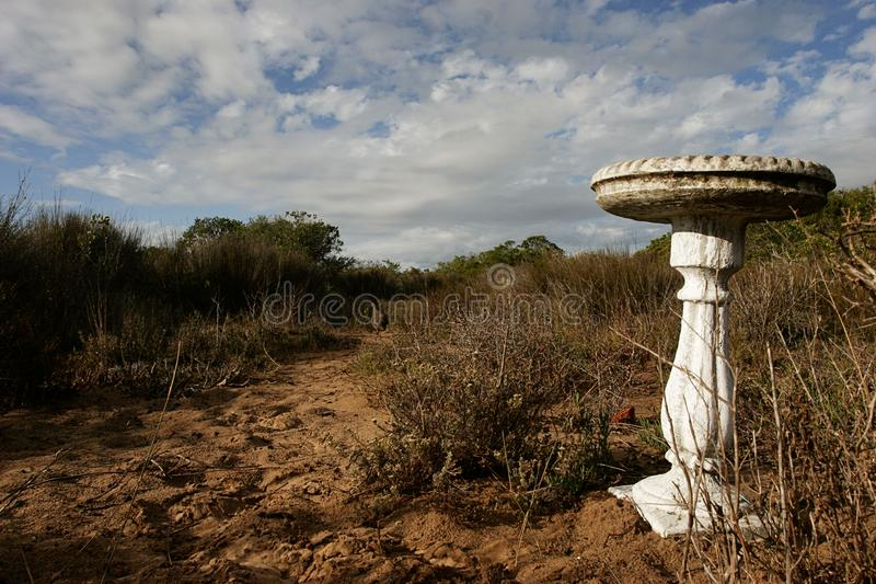 Een vogelbad in een ruw woestijnmilieu royalty-vrije stock foto