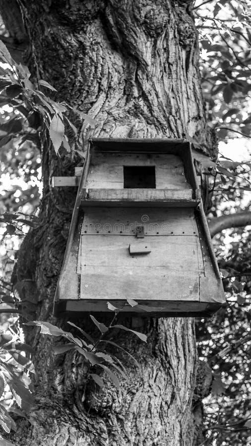 Een vogelshuis royalty-vrije stock foto's