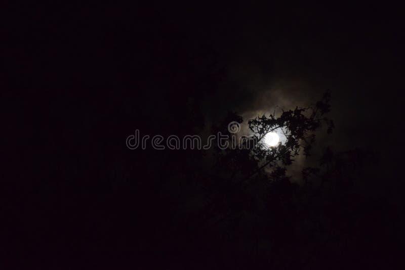 Een volle maan royalty-vrije stock afbeelding