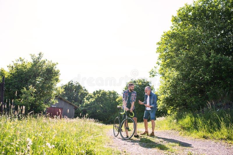 Een volwassen hipsterzoon met fiets en hogere vader die in zonnige aard lopen stock foto's