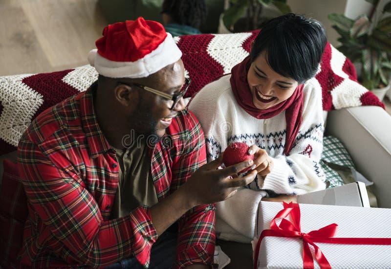 Een vrolijk paar geniet Kerstmis van vakantie stock afbeelding