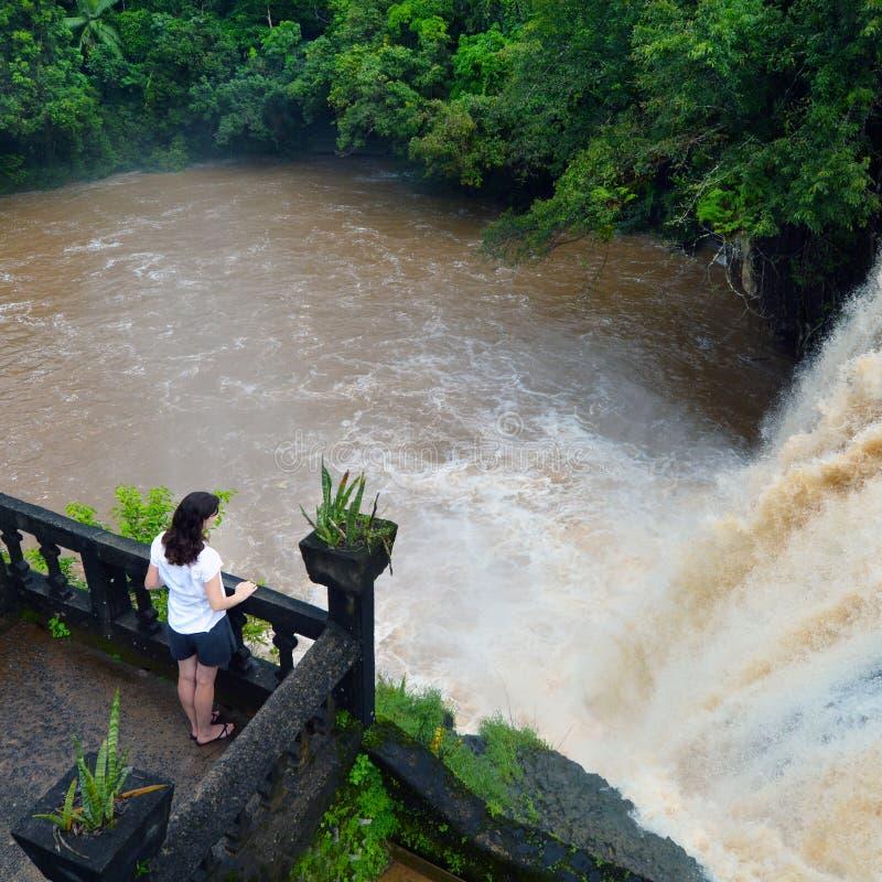 Een vrouw bekijkt in Mena Creek Falls in Paronella-Park in Queenland stock afbeeldingen