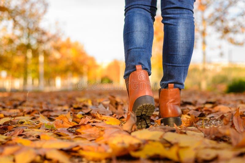Een vrouw die bij de herfstseizoen lopen royalty-vrije stock fotografie