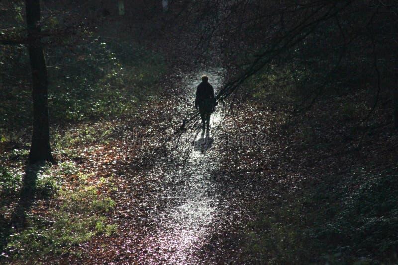 Een vrouw loopt alleen in een donker bos stock afbeelding