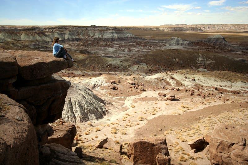 Een vrouw zit op een Richel in Verstijfd van angst Bos stock foto's