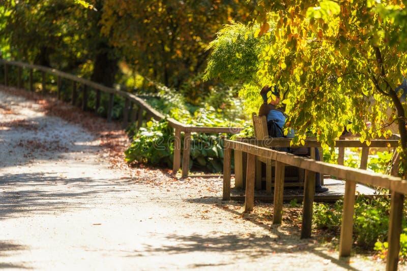 Een vrouw zit op een parkbank aan de rand van een vijver royalty-vrije stock foto