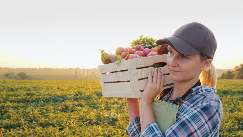 Een vrouwelijke landbouwer met een doos van verse groenten loopt langs haar gebied Het gezonde eten en verse groenten stock foto