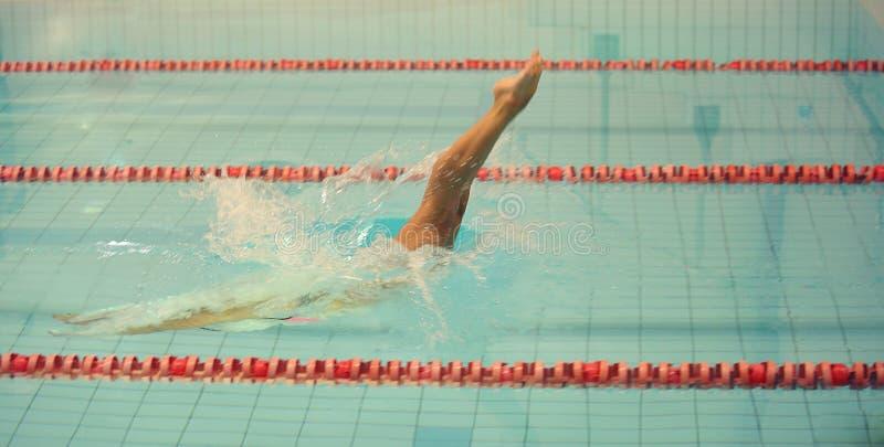 Een vrouwelijke zwemmer, die springend en duikend in binnensport zwembad Sportieve vrouw stock fotografie