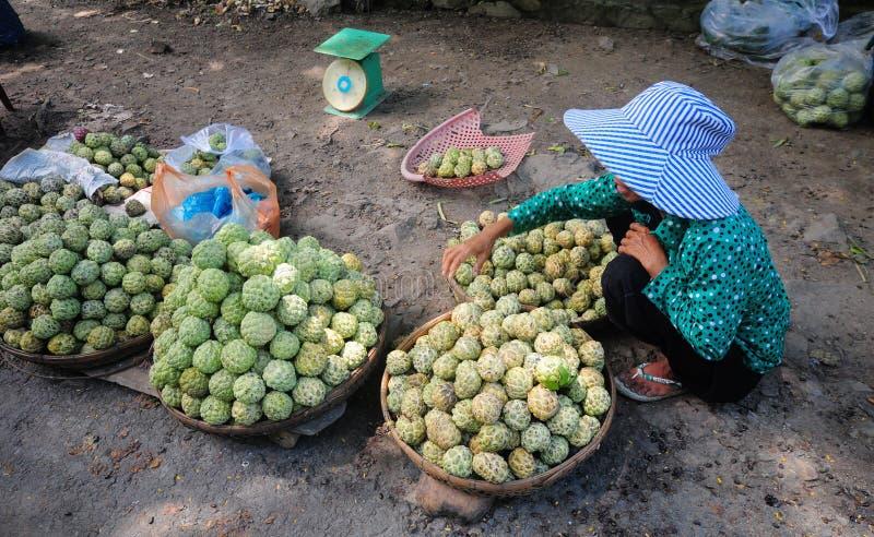 Een vrouwen verkopende vruchten in Bacgiang, noordelijk Vietnam royalty-vrije stock foto