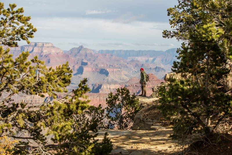 Een wandelaar in het Nationale Park van Grand Canyon, Zuidenrand, Arizona, de V.S. royalty-vrije stock afbeelding